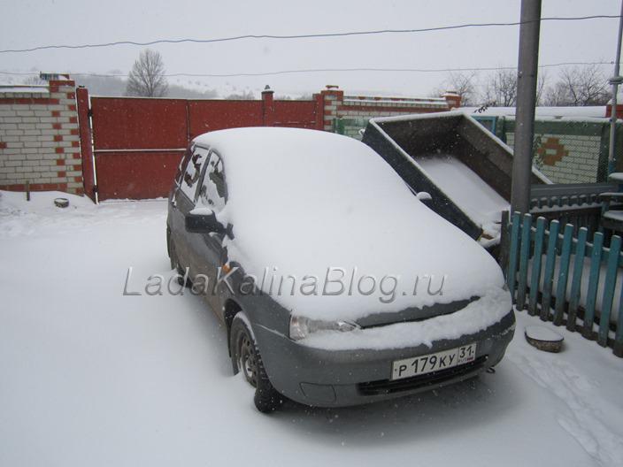 подготовка Калины к зиме